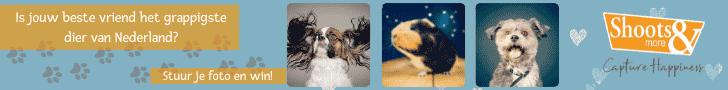 Wedstrijd grappigste dier van het jaar